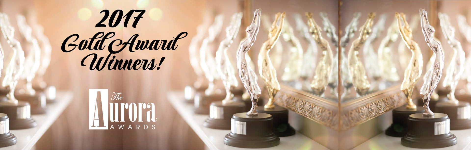 2017 Aurora Awards Gold Winners